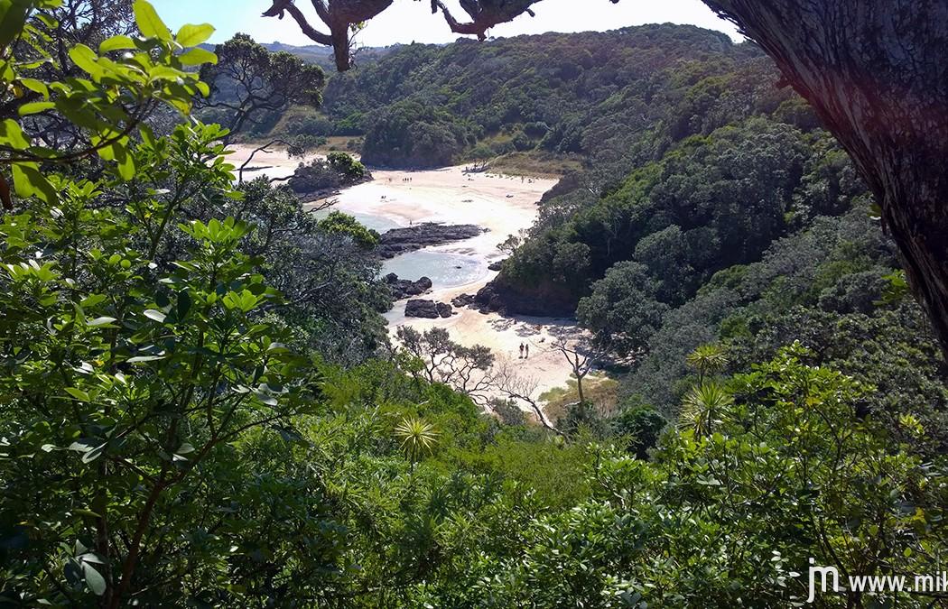 Matapouri Mermaid Pools potep