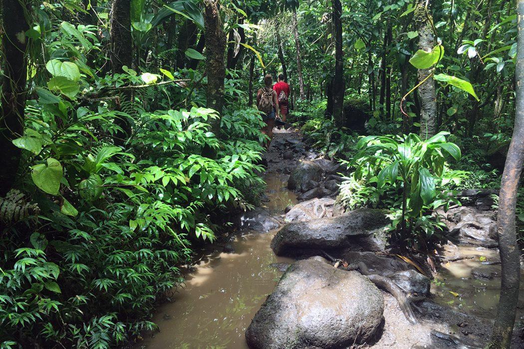 hanakapiai_falls_kalalau_trail_2
