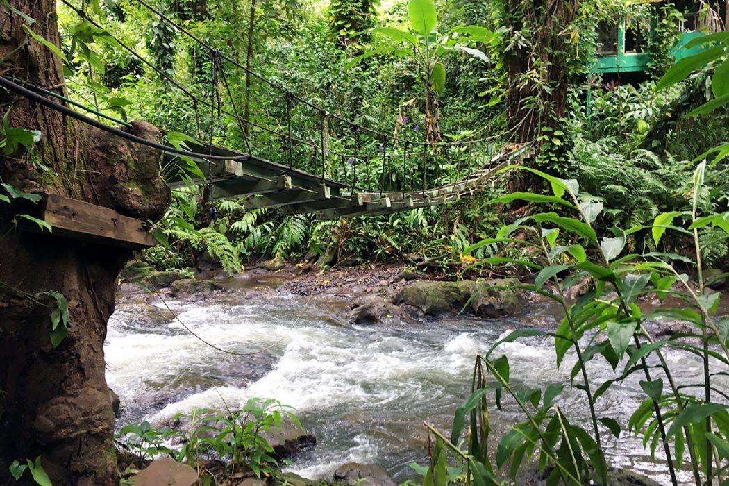 maui_waterfall_trail_2